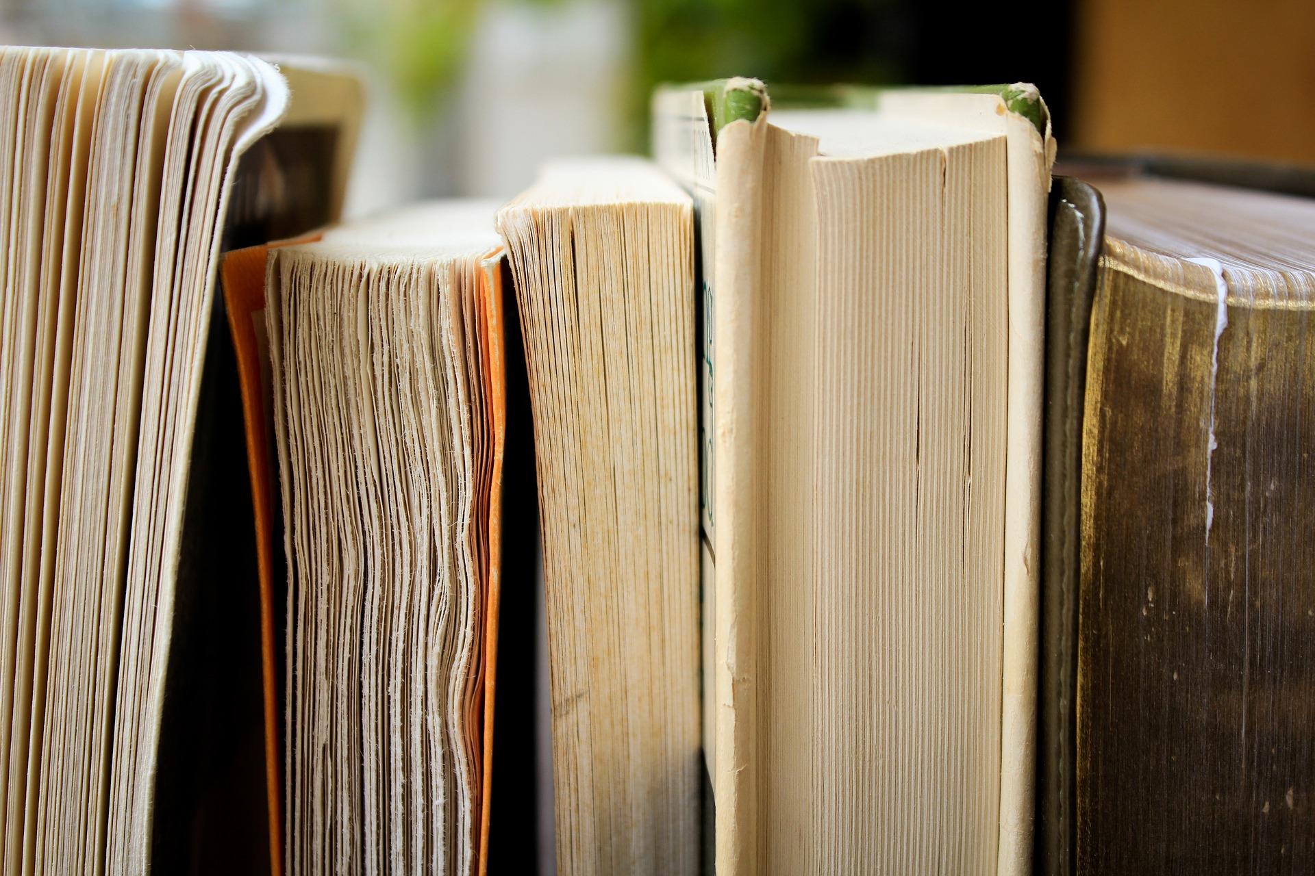 Book reviews by Dawn McGuigan